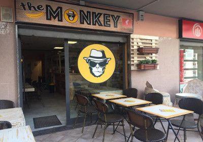the mokey ladispoli